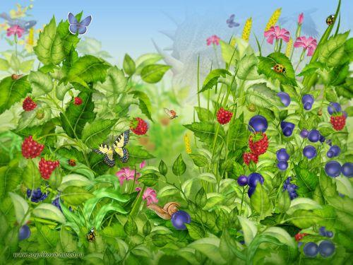 jardim da fantasia