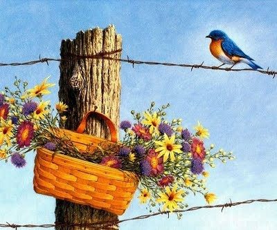Flores, pássaro e espinhos
